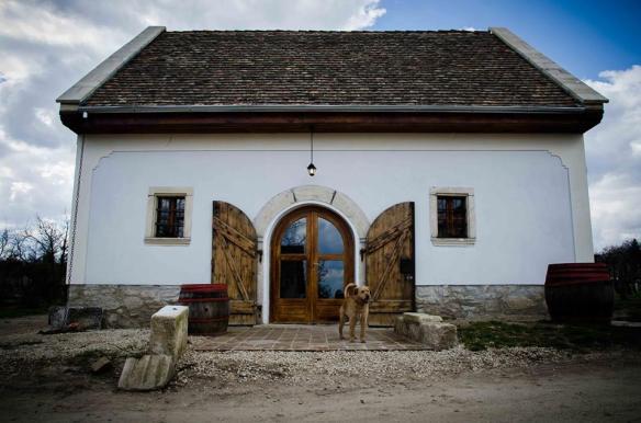 EtyekM winery and restaurant