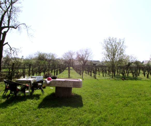 EtyekM vinery and restaurant