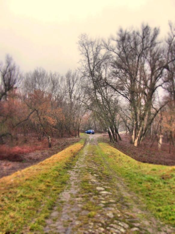 Road down to river Tiszainoka
