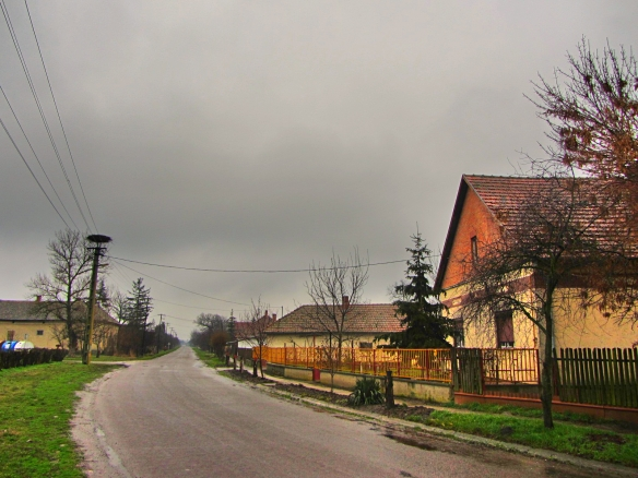 Rural road Tiszainoka