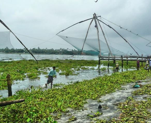 Kerala Chinese fishing nets