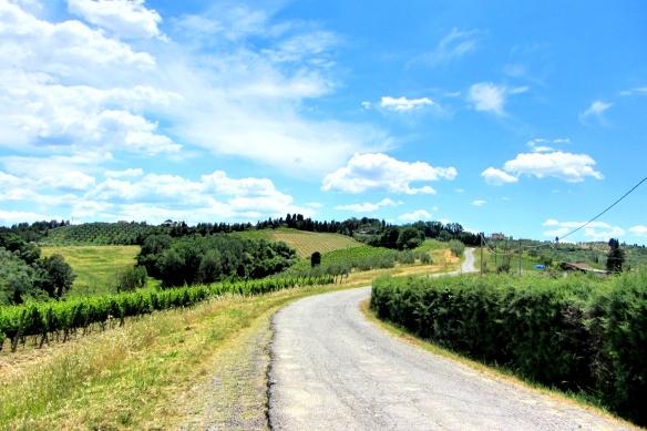 Tuscan road