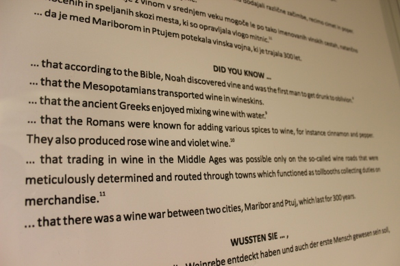 Old Vine House Maribor did you know