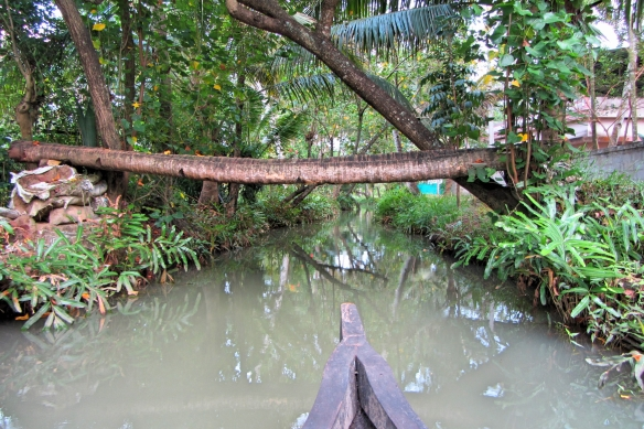 Palm bridge over backwaters Quilon Kerala