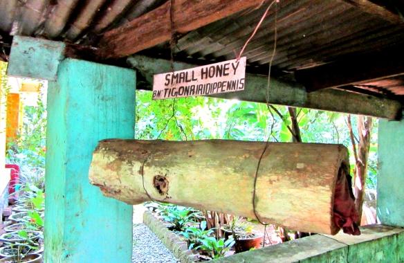 Small Honey Highrange Spices Herbal Garden Thekkady