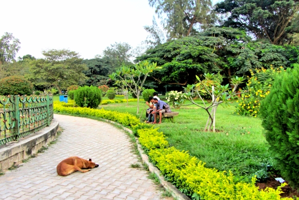 Cubbon park Bagalore India