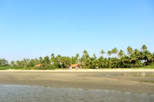 Mandrem beach scenery Goa India