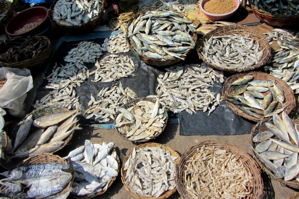 Karwar sunday market dry fish india