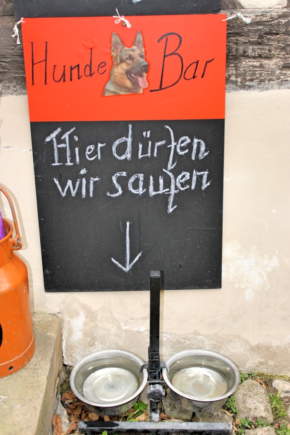 German rules_Hunde bar