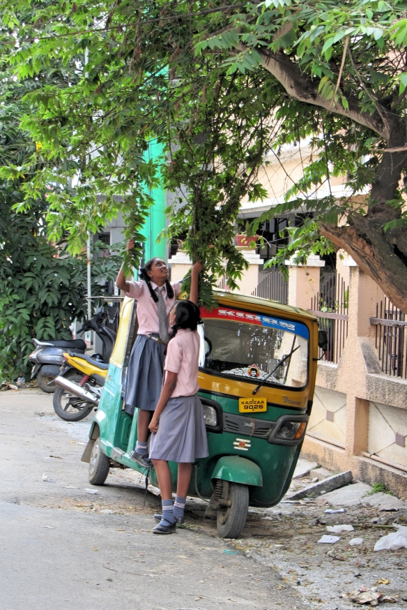 Bangalore school kids after school